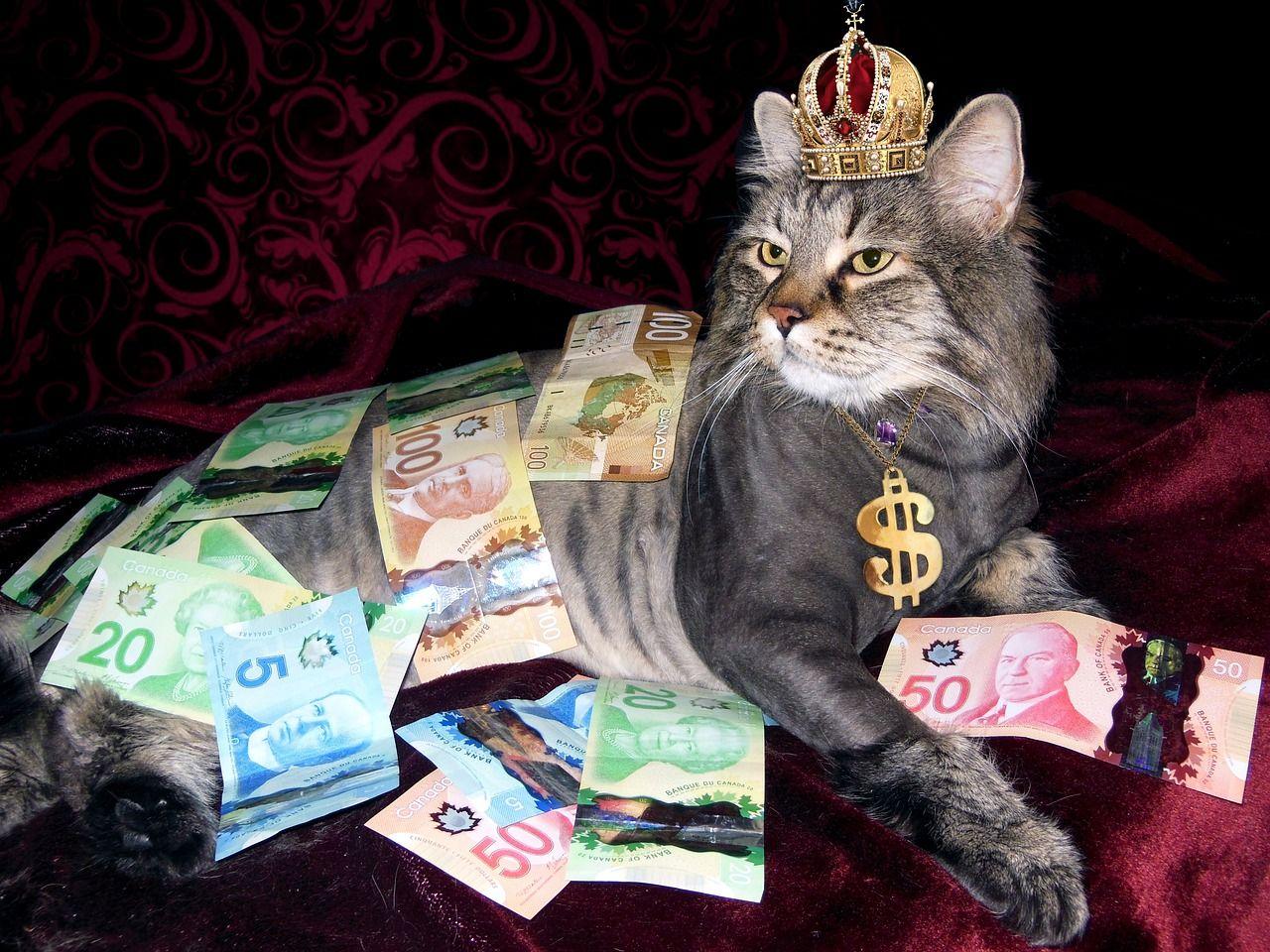 【予想通り】大勝利!タカ派でないFOMCを受けてドル売り加速【7月27日の為替相場ポイント&経済指標まとめ】