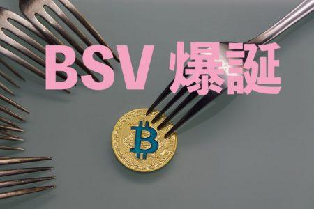 【BSV】ハードフォーク観測でビットコインキャッシュが爆上げ!【11月3日の仮想通貨】