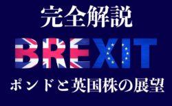 【完全版】ブレグジット(英国EU離脱問題)総まとめ!2019年のポンド&FTSE100展望解説【Brexit】