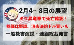 【一般教書演説】NYダウ3,000ドル昇竜拳!今週の相場見通し&トレード戦略まとめ【2月4〜8日】