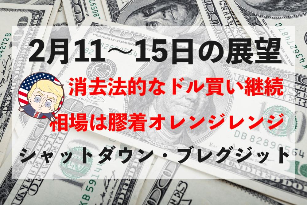 【ドル円】シャットダウン回避?消去法的なドル買いは続く可能性…【2月11〜15日】