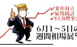 【米中問題】トランプは経済優先?安堵感で株高、為替は緩いドル安が意識されるが…【6月1〜5日の週間相場展望】