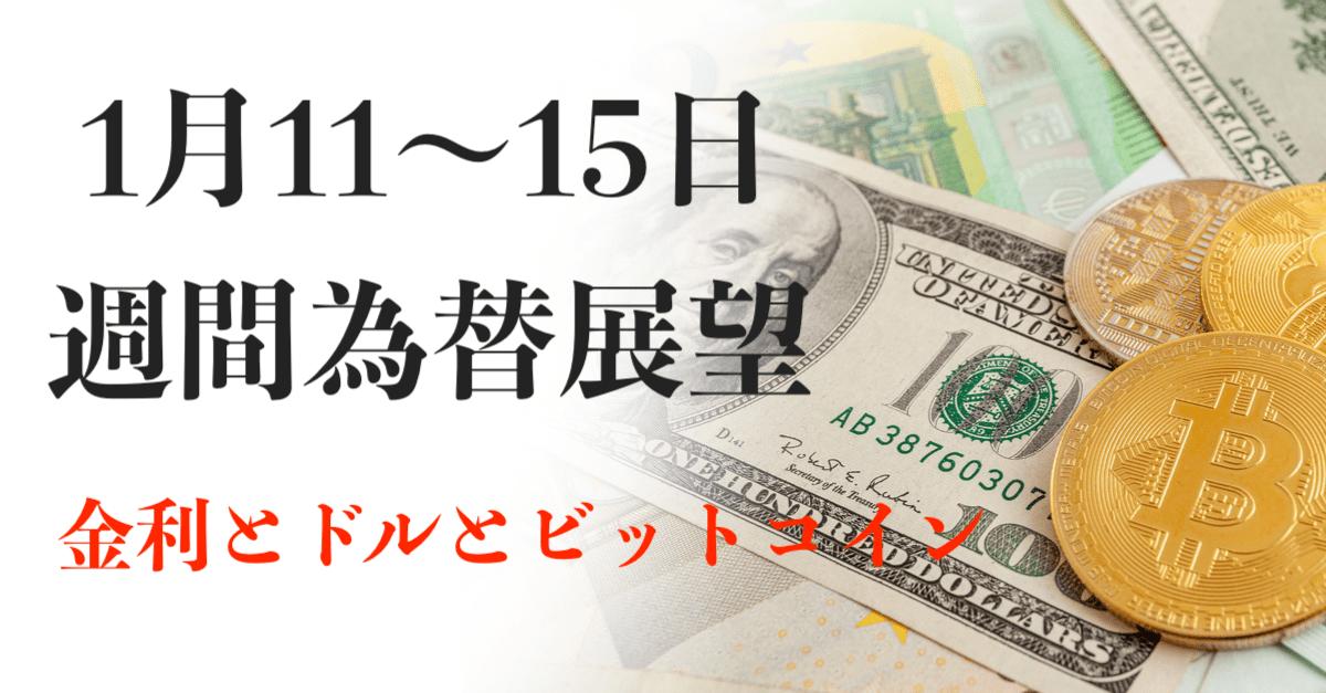 【ドル高】単なる悪い金利の上昇ではない?ビットコインは20%超の下落!【1月11〜15日の週間為替展望】
